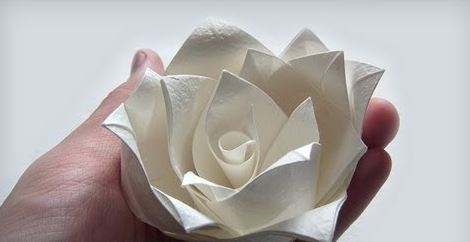 Gấp hoa hồng Origami bằng giấy ăn