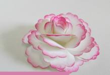 Cách gấp hoa giấy theo phong cách origami