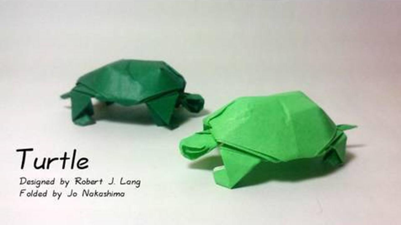 Cách gấp con rùa bằng giấy