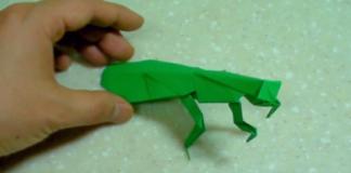 Cách xếp con bọ ngựa theo phong cách origami
