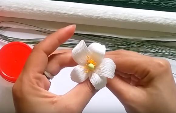 Cách làm hoa bưởi bằng giấy nhún