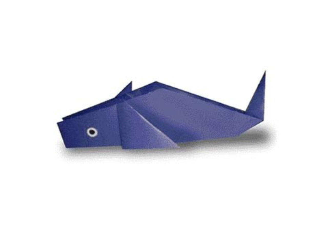 Cách gấp chú cá heo bằng giấy