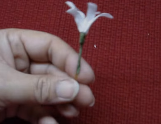 Cách làm hoa dạ hương lan bằng giấy