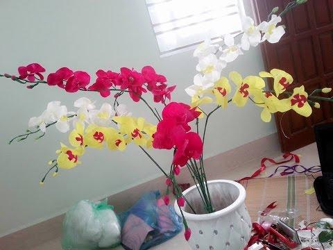 Cách làm hoa lan hồ điệp bằng giấy nhún