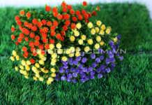 Hoa và thảm cỏ trang trí sân vườn