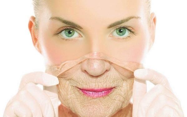Công dụng của nha đam đối với da
