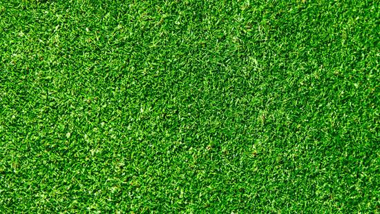 Ưu điểm vượt trội của thảm cỏ nhân tạo