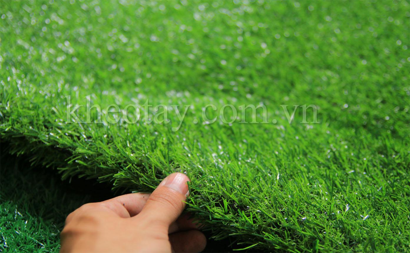 Cỏ 2cm xanh mùa hạ - Sợi cỏ nhỏ, mật độ cỏ vừa phải, thảm cỏ đều đẹp.