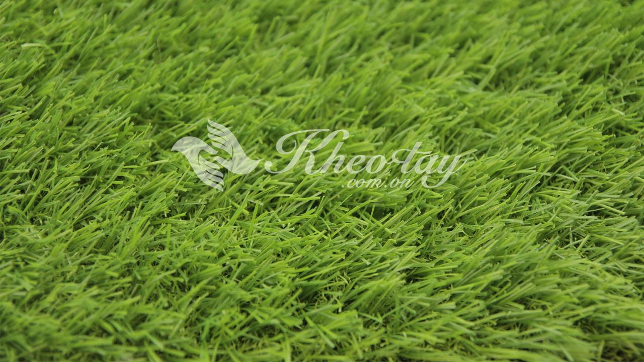 Vẻ đẹp của cỏ 2cm