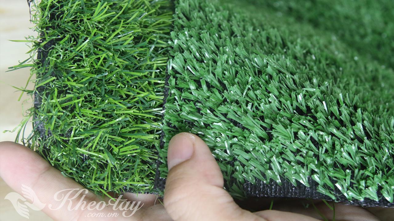 Mẫu thảm cỏ nhân tạo 2cm và 1cm